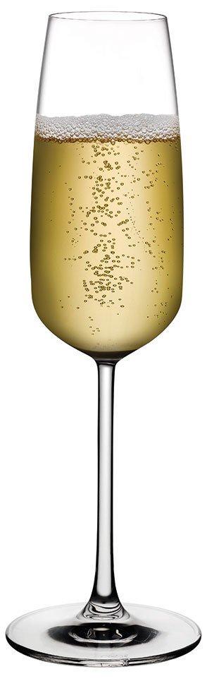 66091 Mirage Şampanya Kadehi