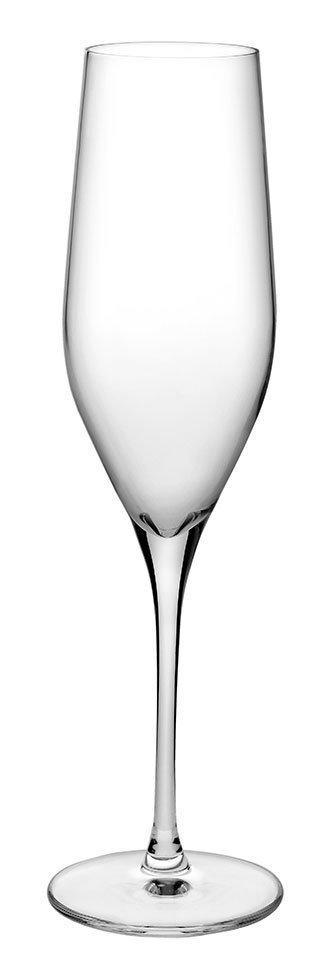 66079 Vinifera Şampanya Kadehi